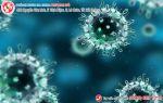 Xét nghiệm virus HPV nhanh chính xác tại đa khoa Phượng Đỏ