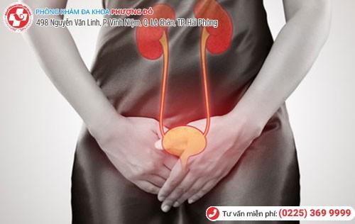 Nguy cơ suy thận do viêm đường tiết niệu