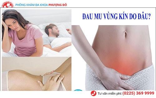 Sỏi bàng quang gây ra những cơn đau mu vùng kín