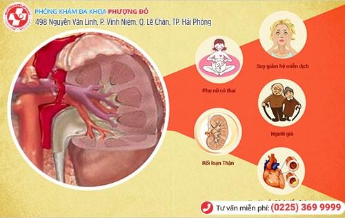 1 số nguyên nhân chính khiến hệ tiết niệu viêm nhiễm