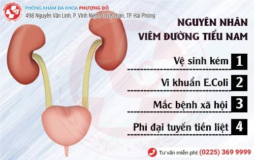 Nguyên nhân viêm đường tiểu nam