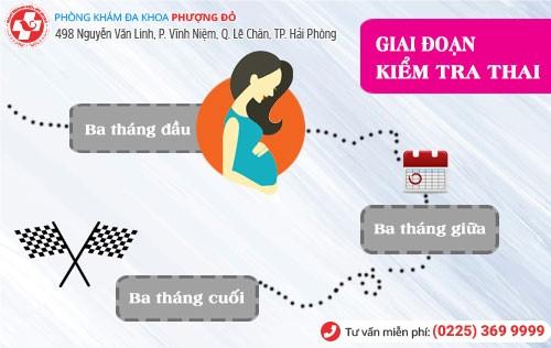 Giai đoạn kiểm tra thai